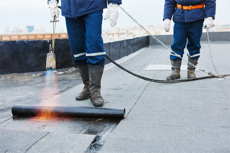 Home Thomas James Roofing And Waterproofing